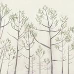 林の中 120601@