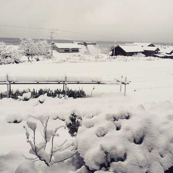 雪の多い年明け